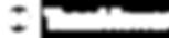 teamviewer-logo-big copy.png