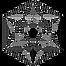 stellar-star-black.png