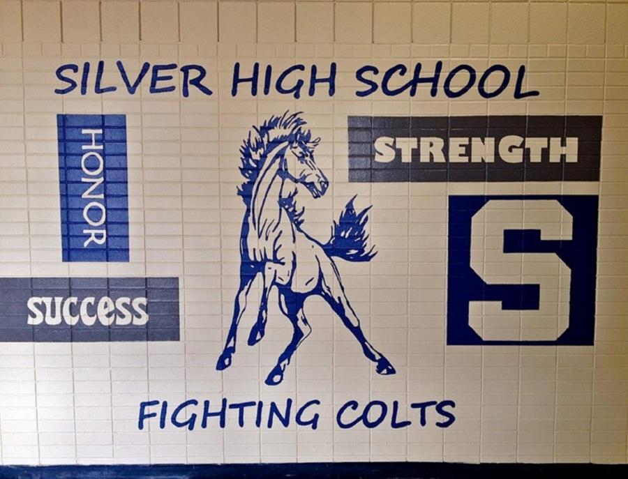 Silver Schools