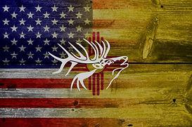 NM Elk.jpg