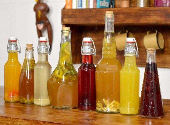 Produção de Kombucha, chá gaseificado, se multiplica no Brasil