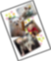 クリアファイル_Aセット_01.png
