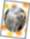 クリアファイル_Aセット_02.png