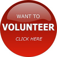 volunteer-clipart-png-20_edited.png