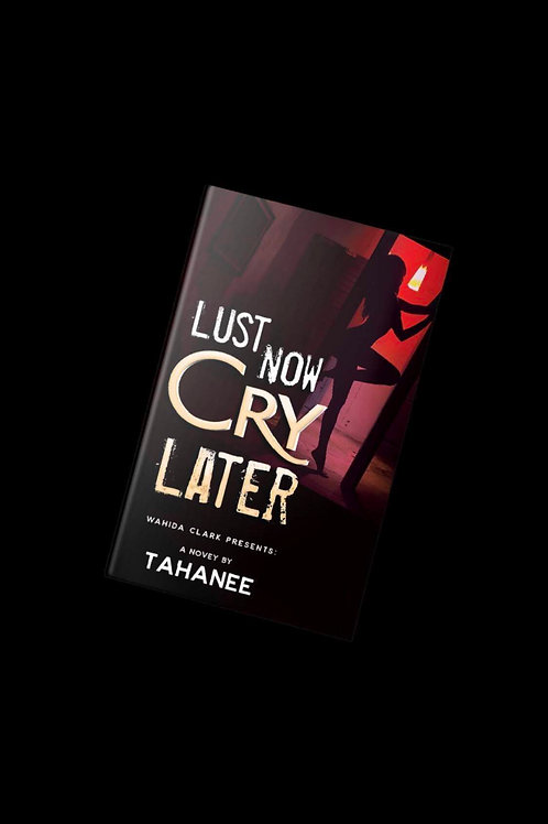 Lust Now, Cry Later novel