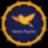 VP-Logos-Watermarks_1 Main Logo.png