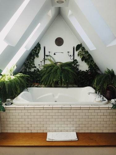 Beautiful bathtub with plants