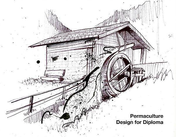 Design for Diploma Cover.jpg