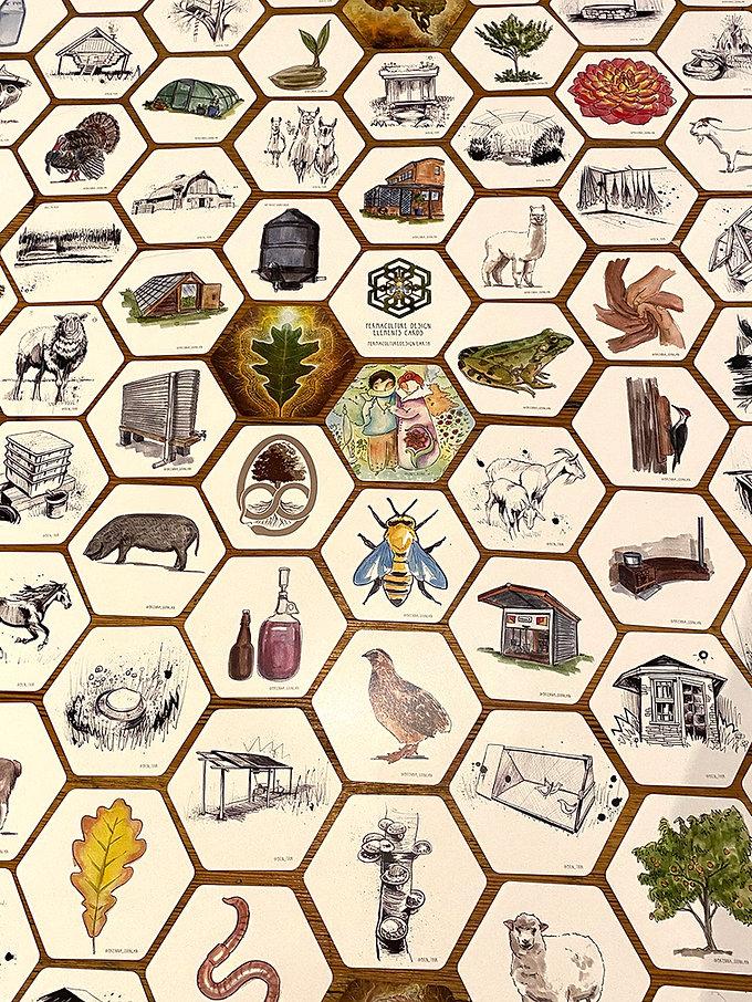 Game Detail 5 web.jpg