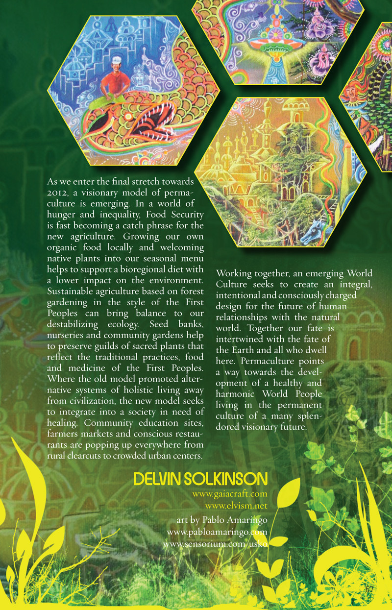 CoSM journal of visionary culture 2011 Human/Nature edition