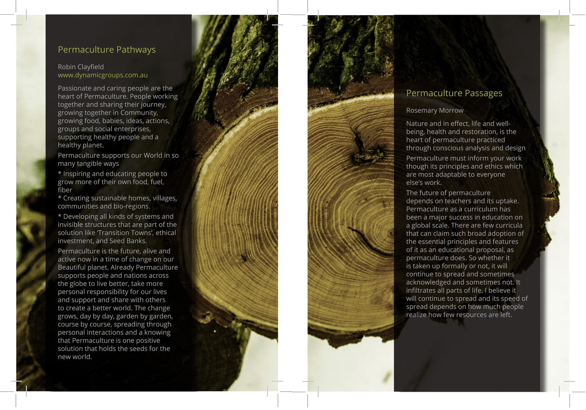 Projections Magazine