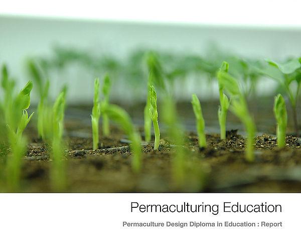 Diploma 2012 Cover.jpg