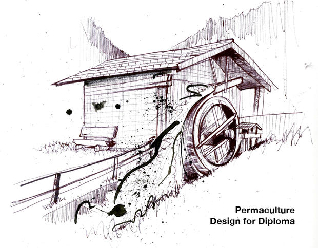 Design for Permaculture Diploma
