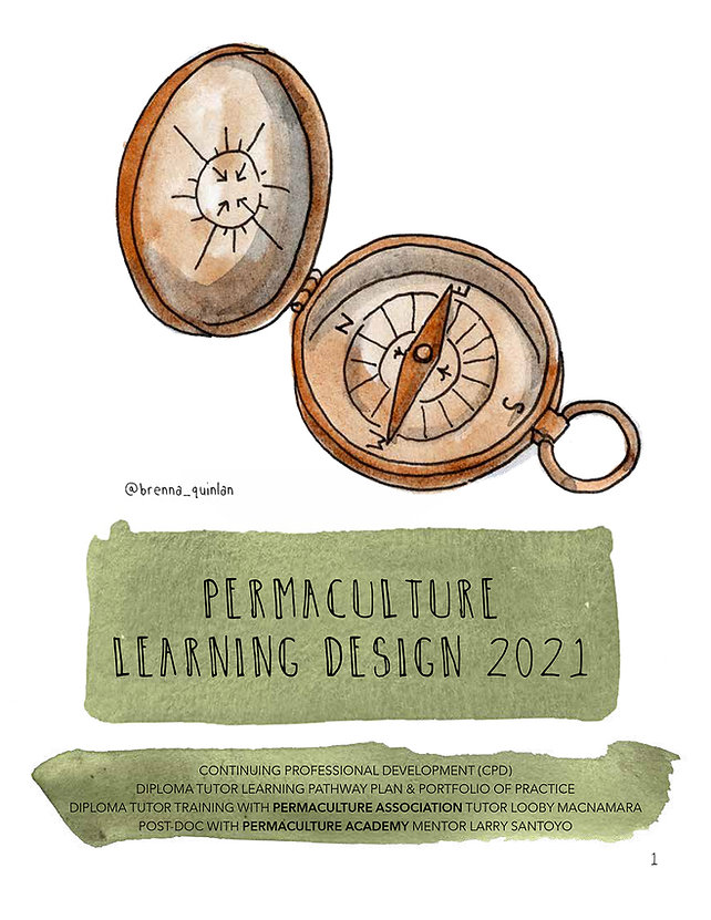 Delvin Learning Design 2021 COVER.jpg