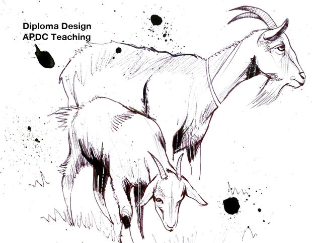 Design for Advanced Permaculture