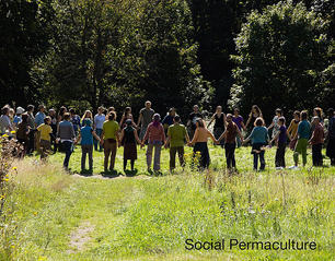 Social Permaculture Class Book