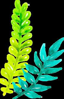 Leaf_Left.png