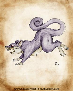 19 Rattata