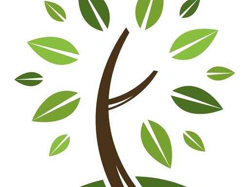 Ноябрьские экологические форумы