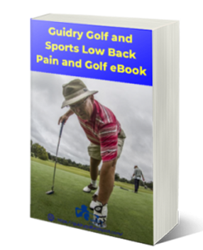 e-book_cover_low_back_pain-244x300.png