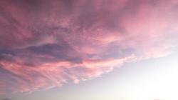rosa céu 4
