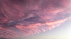 rosa céu 5