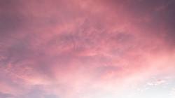 rosa céu 1