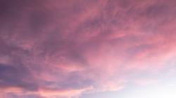 rosa céu 3