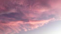 rosa céu