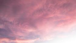 rosa céu 2