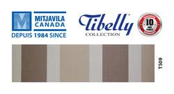 Mitjavila Canada - Tibelly - Site Web 5.5x3-77