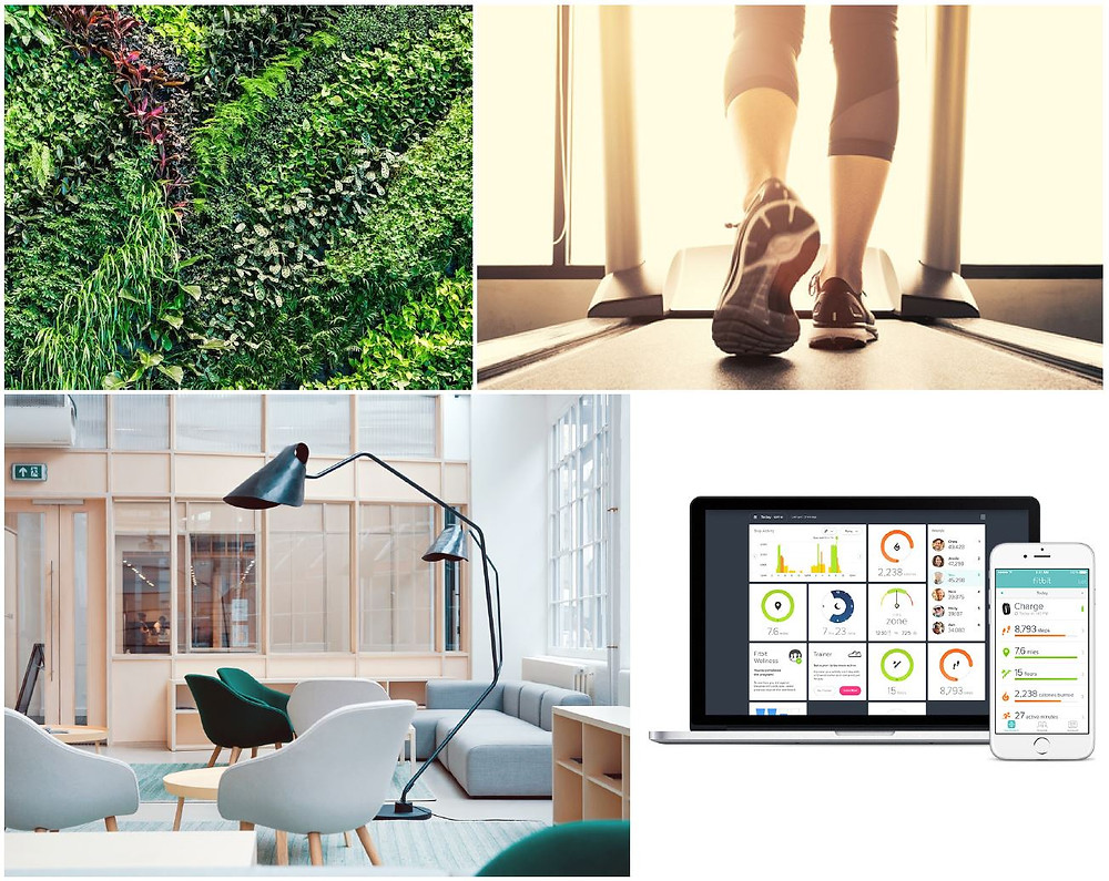 Living wall, office furniture, wellness, exercise, treadmill