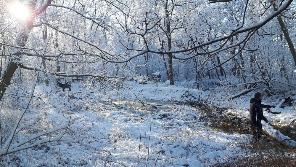 Winterbilder017.JPG