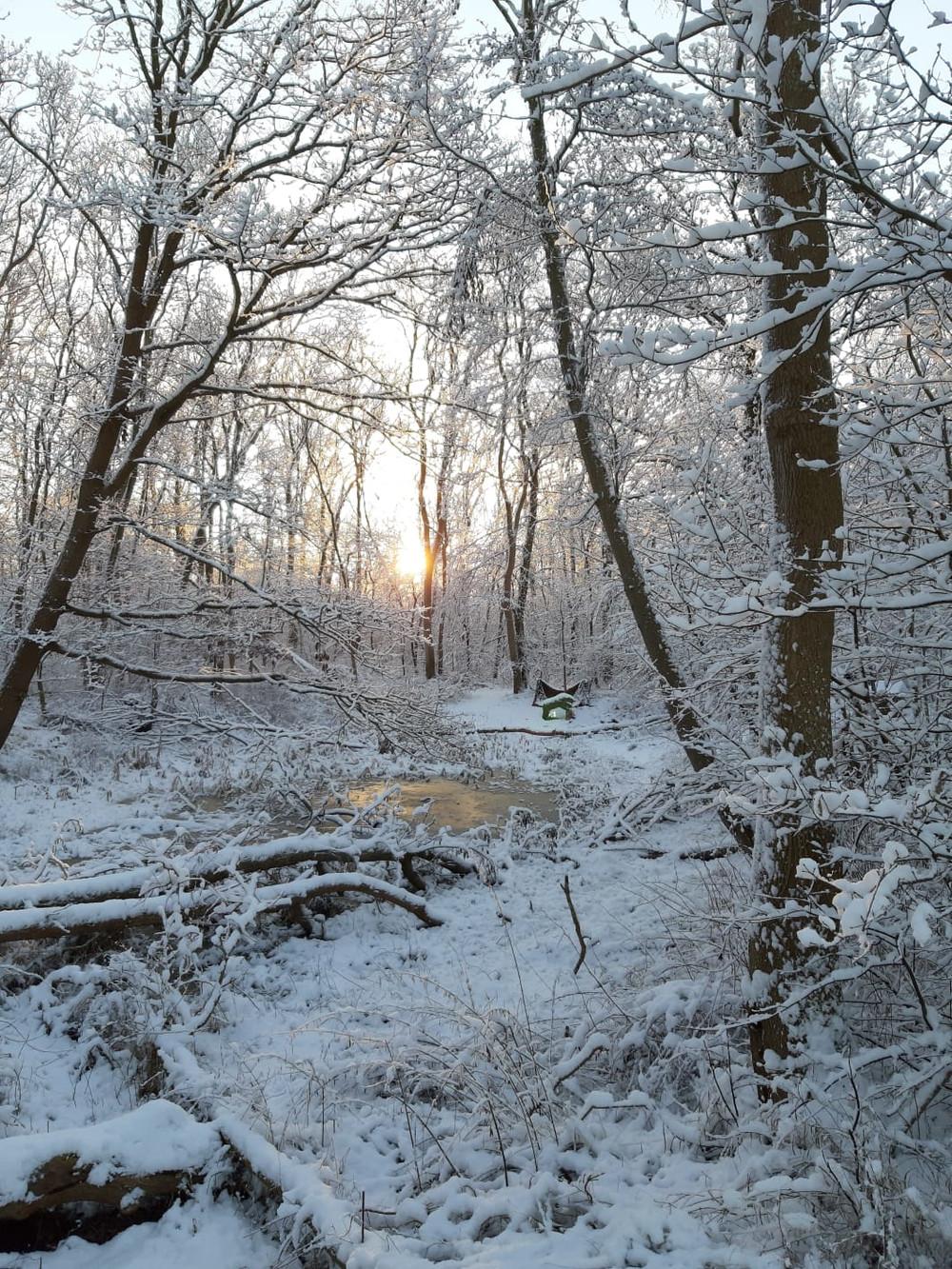 Winterbilder041.JPG
