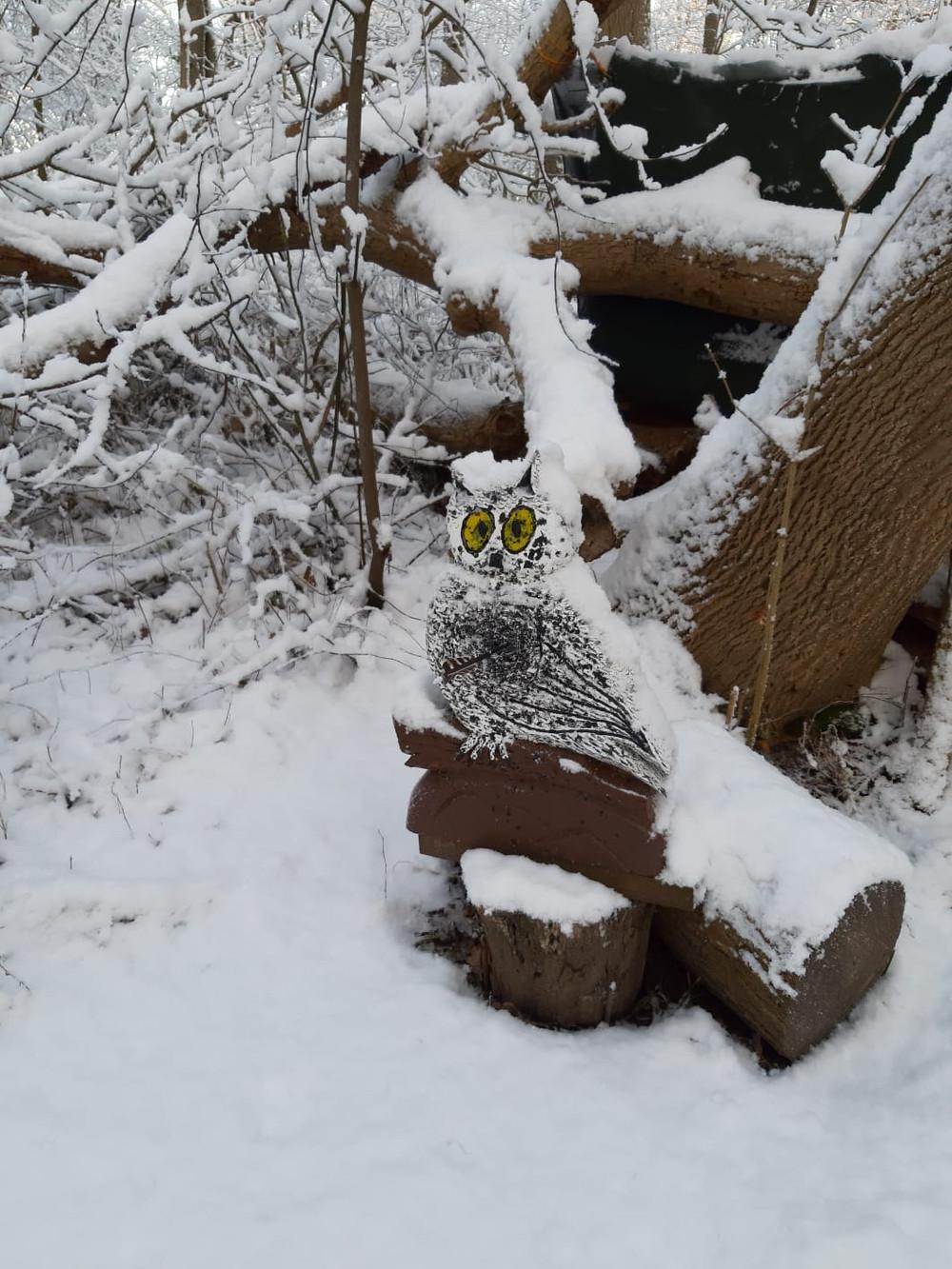 Winterbilder048.JPG