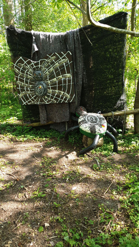 Spinnennetz.jpg