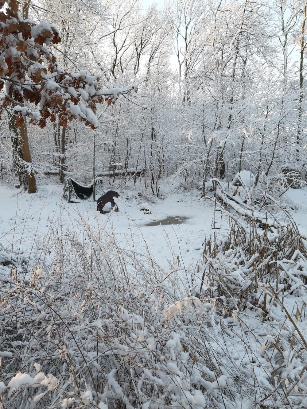 Winterbilder031.JPG