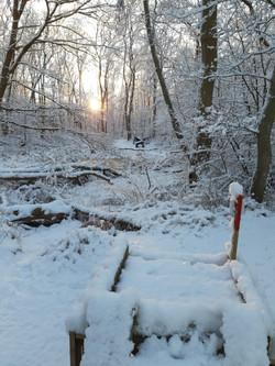 Winterbilder043