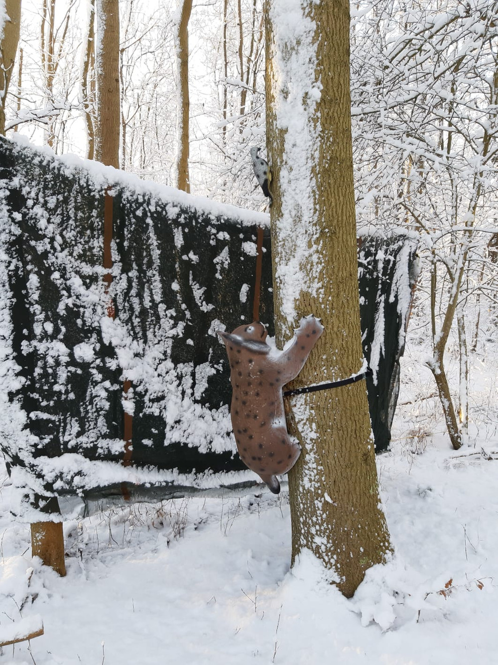Winterbilder029.JPG