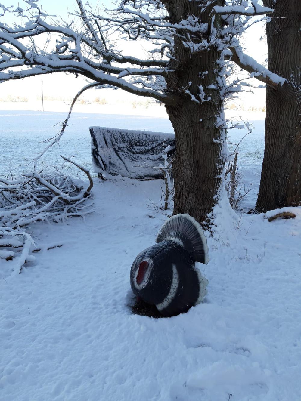 Winterbilder003.JPG