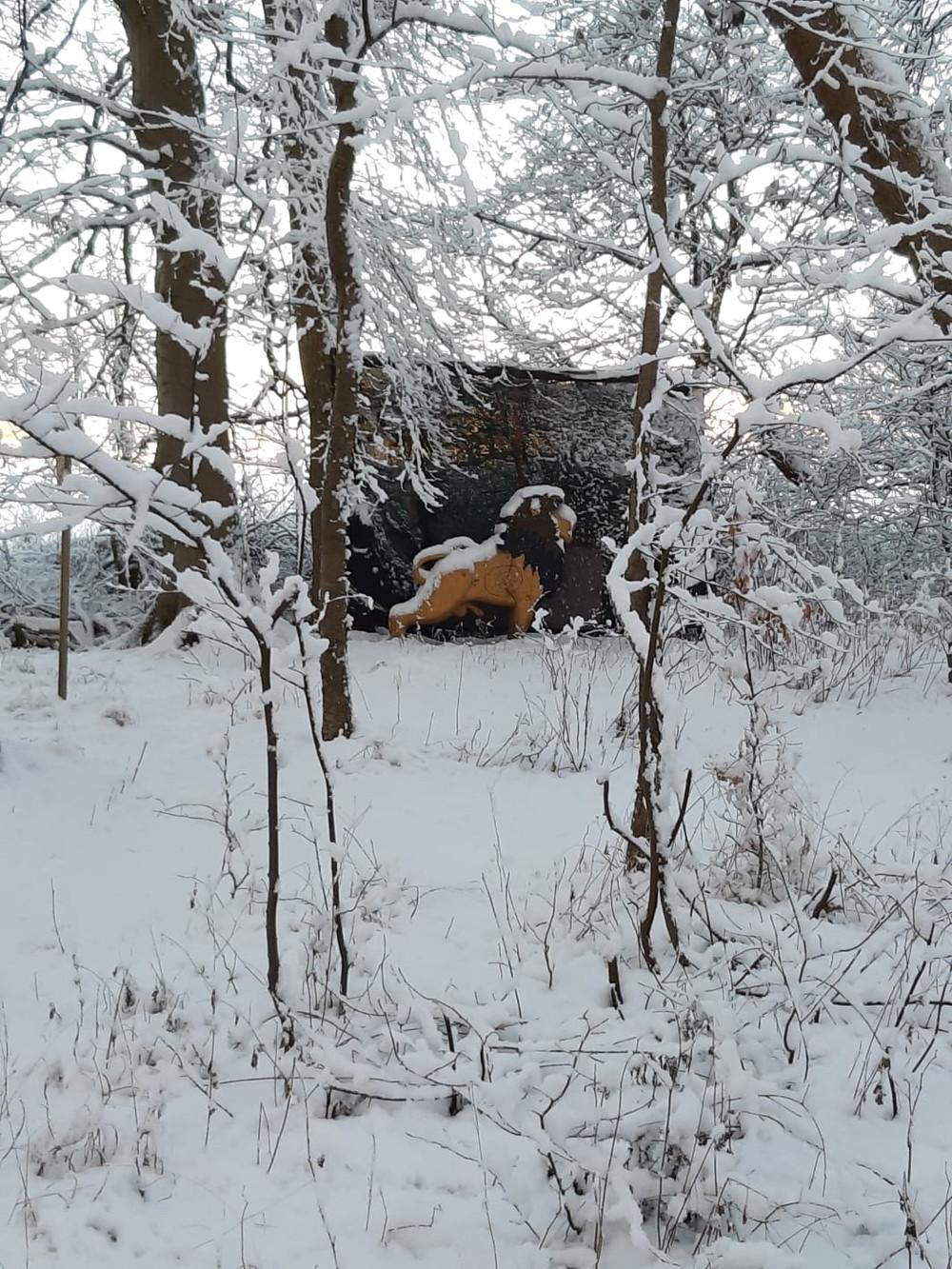 Winterbilder037.JPG