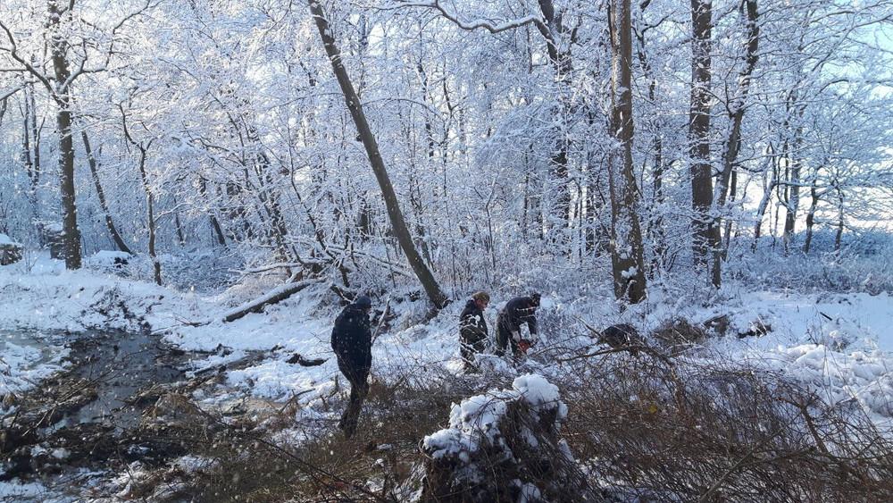 Winterbilder016.JPG