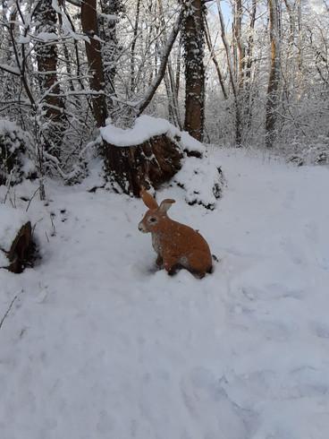 Winterbilder036.JPG