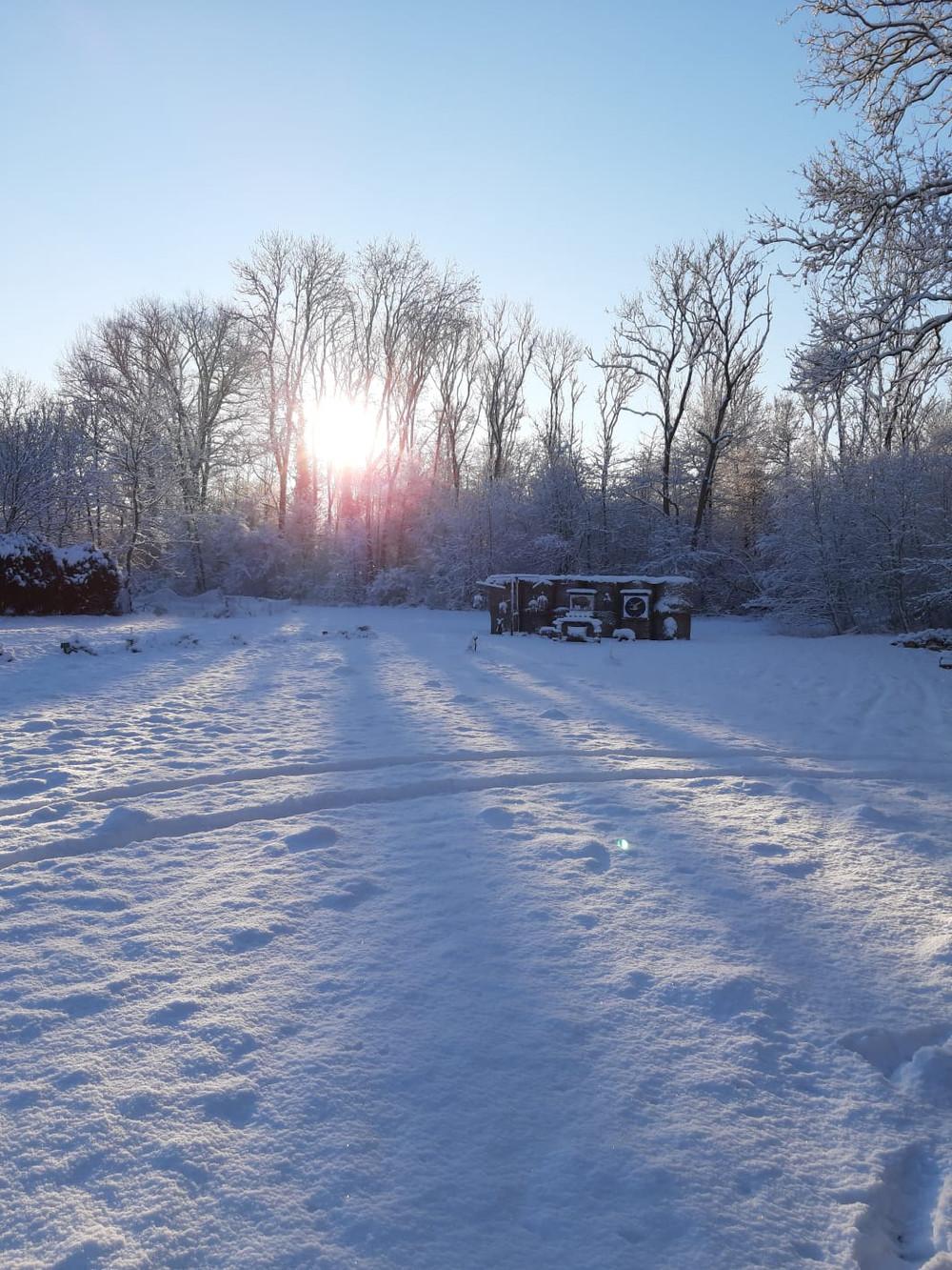 Winterbilder005.JPG