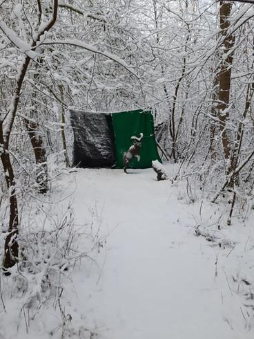 Winterbilder033.JPG