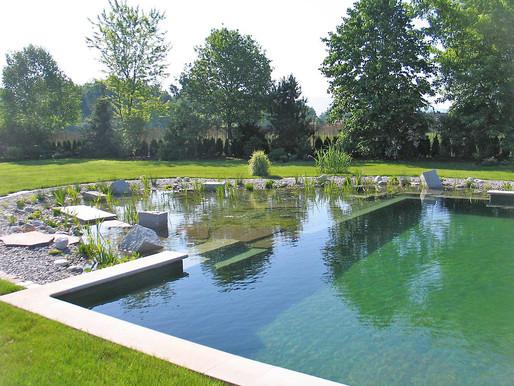 5 questions sur                         les piscines naturelles