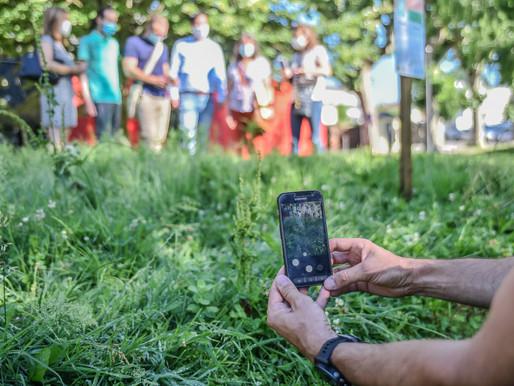 Une appli pour découvrir           la biodiversité villeneuvoise