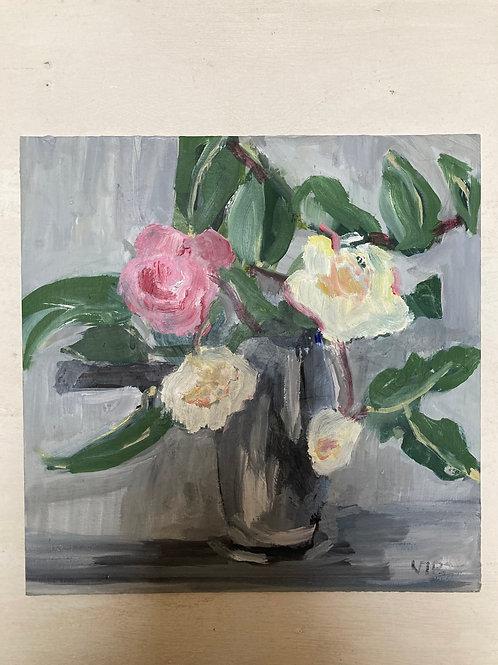 Collection 6 Camellias 4