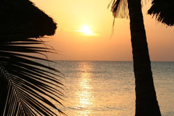 chapwani-zanzibar-hotel-resort-beach-sea 23