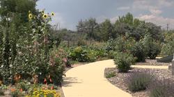 Gardens_view